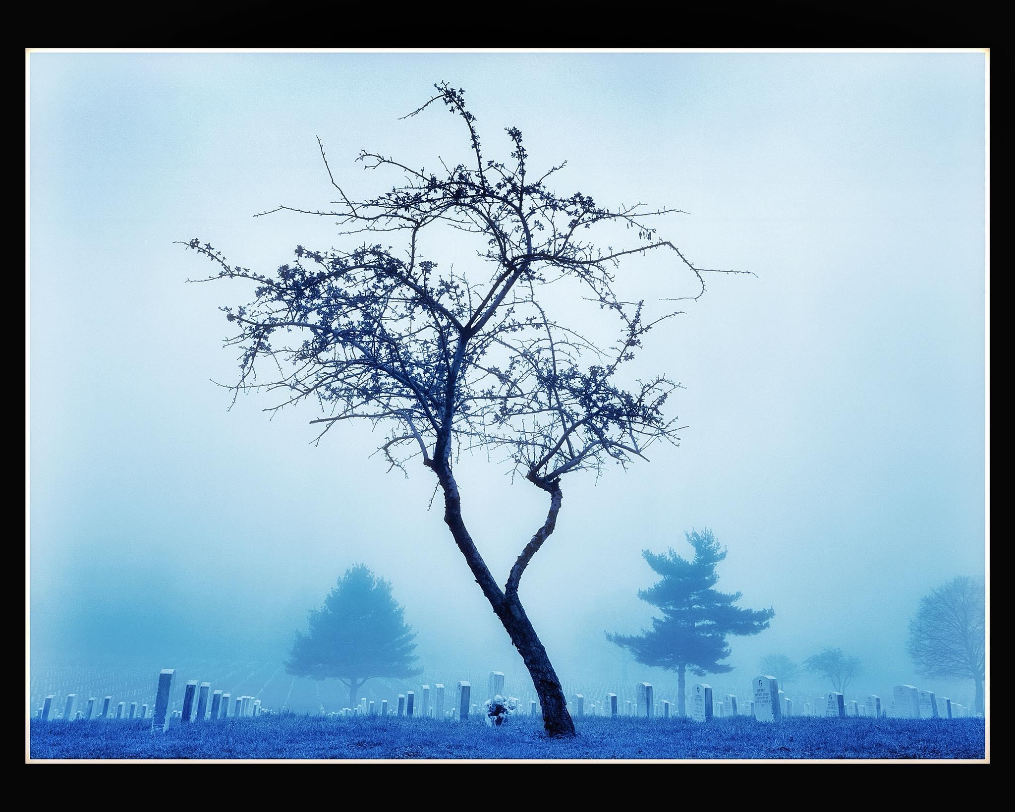Winter Melancholy Creeps In This Petty >> Joseph Hyde S Portfolio Baker Artist Portfolio