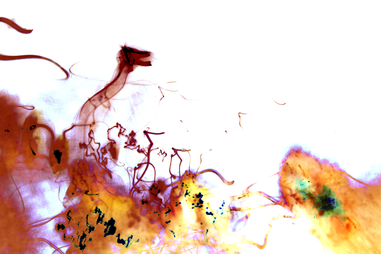 Light Painting:  12.57.59