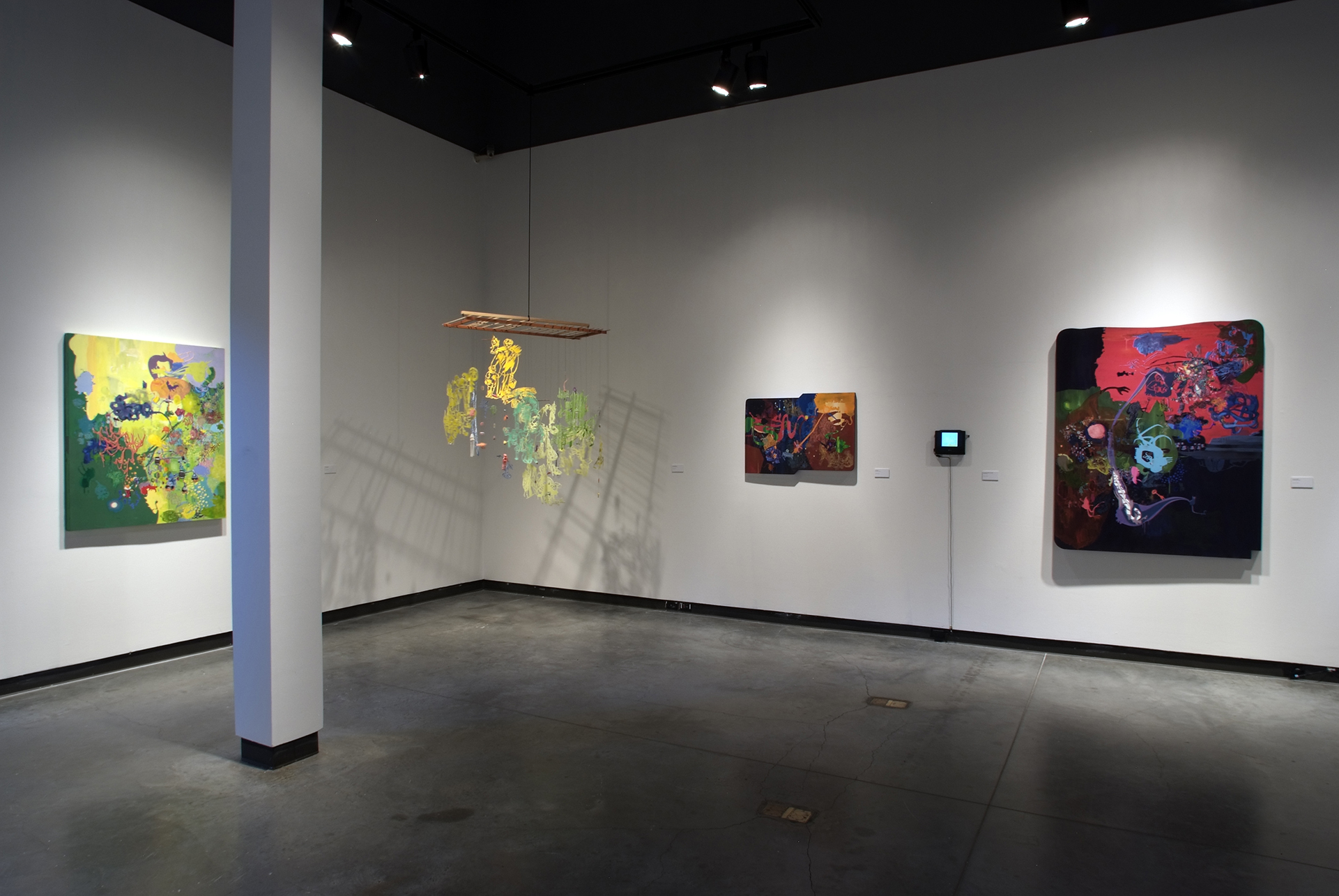 Delaware Center for Contemporary Art, install view