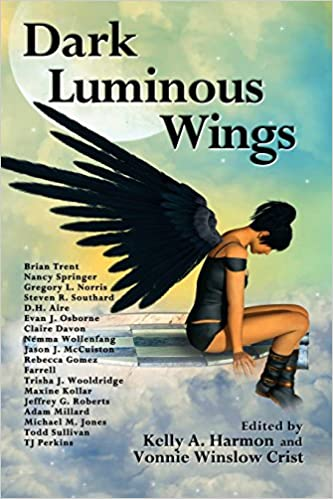 """""""Dark Luminous Wings"""" edited by Vonnie Winslow Crist and Kelly Harmon."""