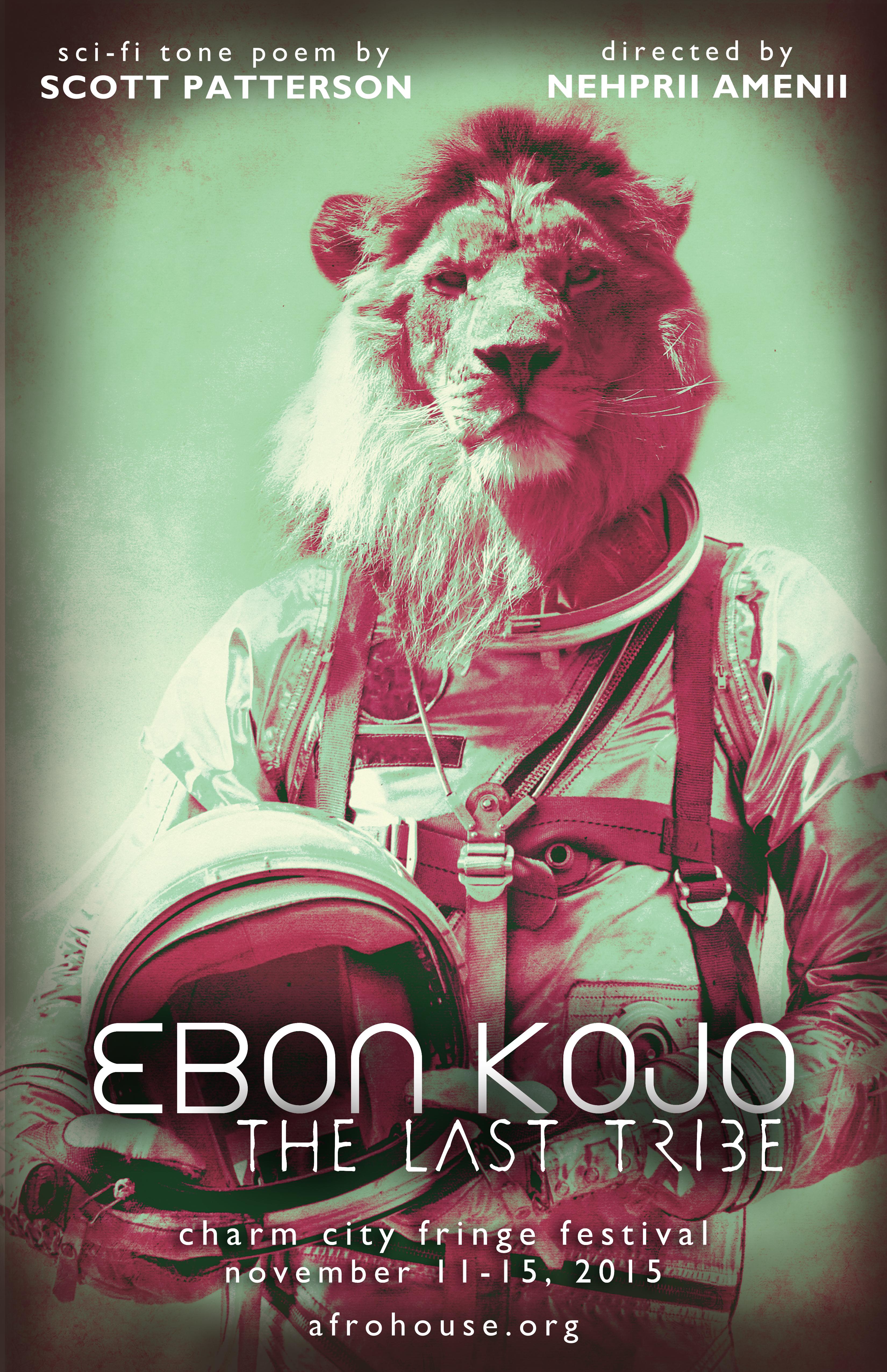 Color Image of a Lion Astronaut