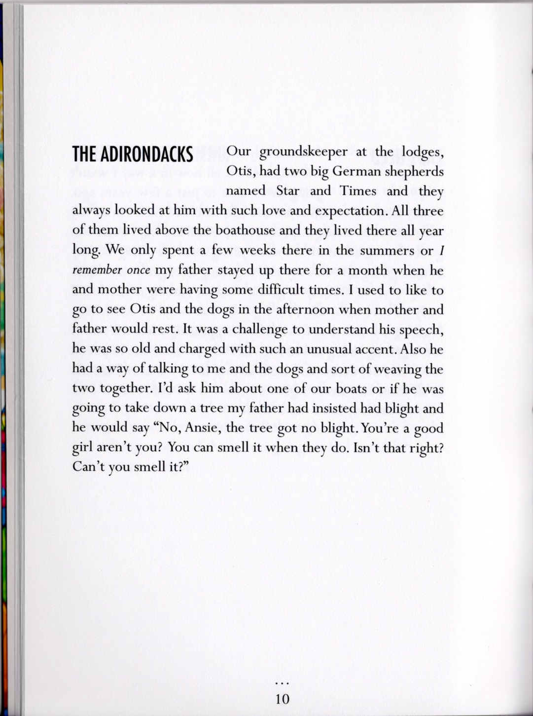 The Adirondacks from ALL THE PEOPLE by Stephanie Barber