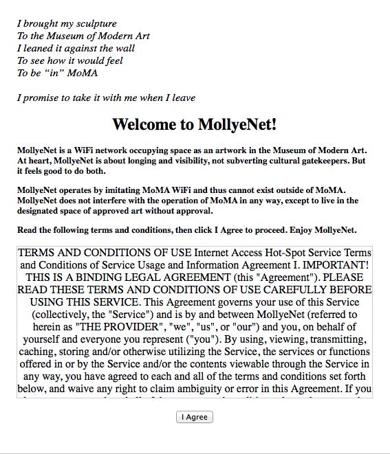 Screenshot of captive portal text.