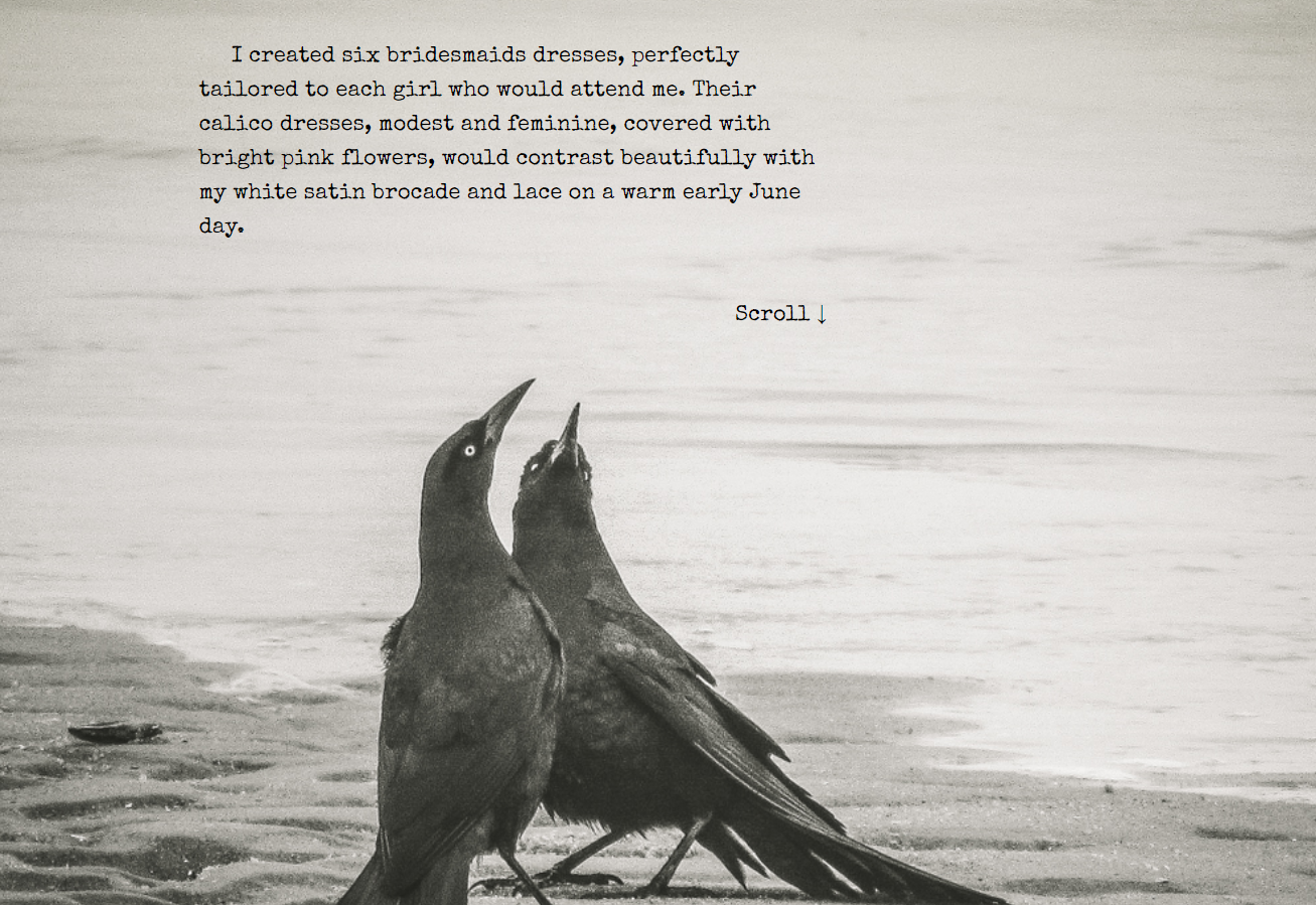 """Screenshot: Photo of two grackles in a mating dance, placed in my Scroll """"A Thing of Transcendent Beauty""""."""
