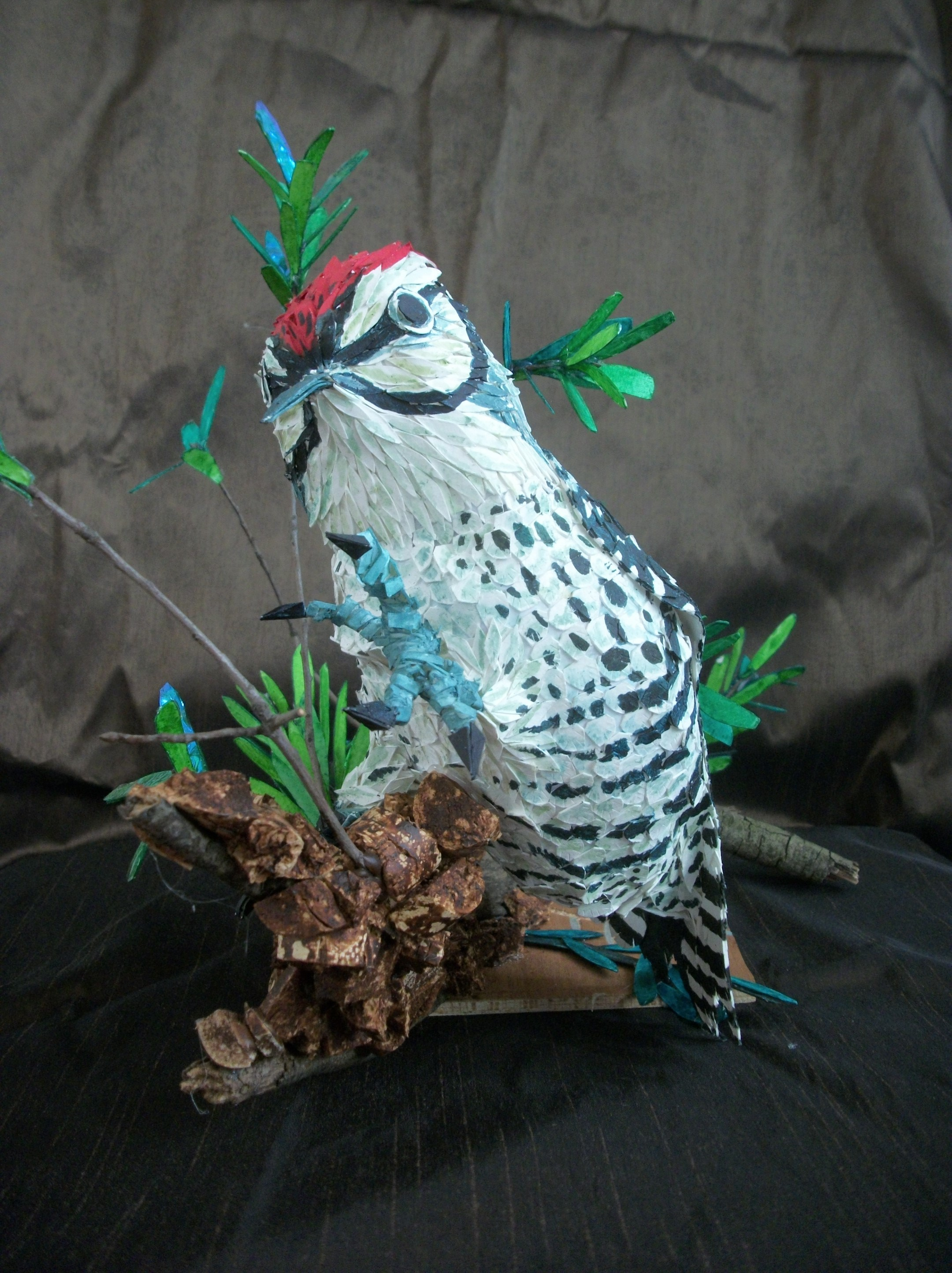 Susan Dorsey_Red-bellied Woodpecker