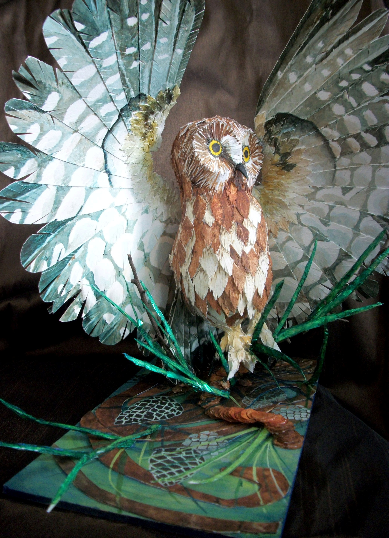 Susan Dorsey_Saw-whet Owl