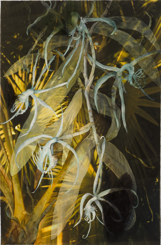 "Flight Lines, 2012, Watercolor & Archival Digital Print on Paper and framing Plexiglas, 46"" x 35.5"""