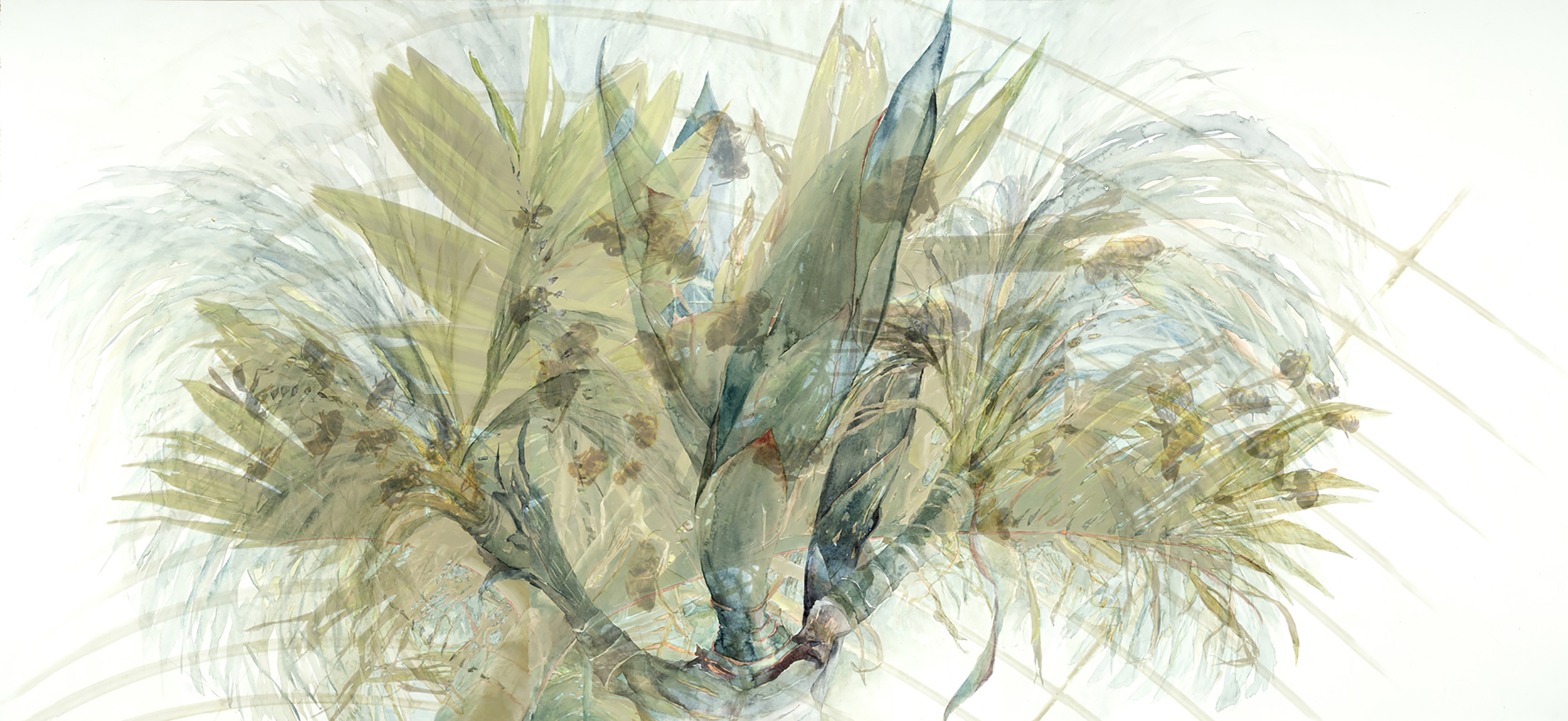 """Five Stages of the Palm with Bees, 2012-14, Watercolor, archival piment print on paper, 29"""" x 63"""""""