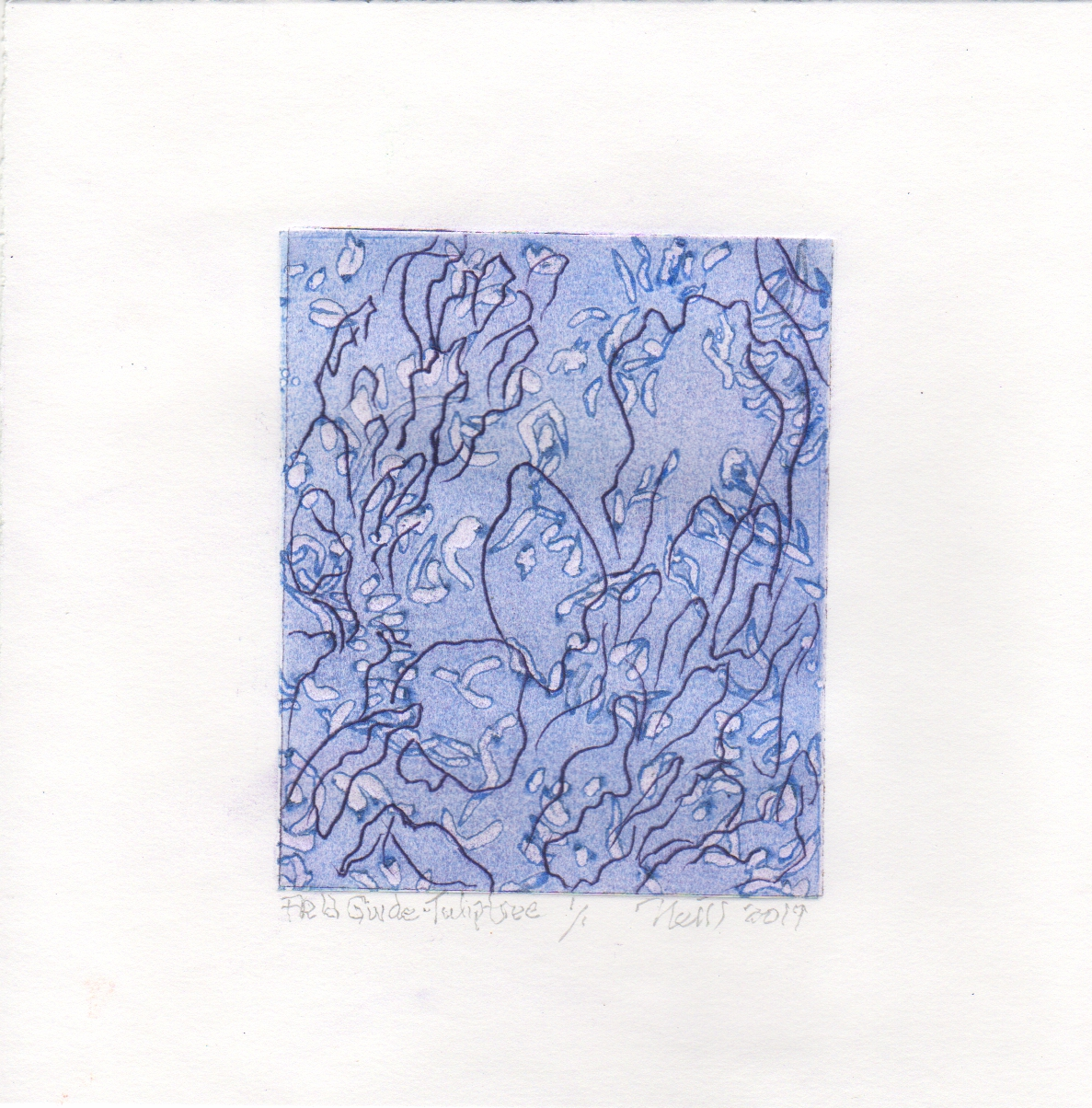 "Tulip Tree Blue, 1/1, 2019, etching, embossing on paper, 5"" X 4"""