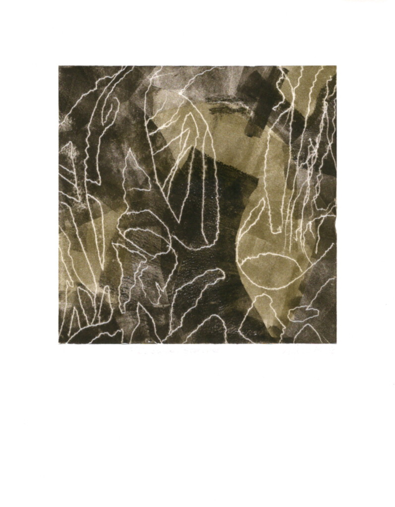 """Field Guide-Branches, 1/1, 2019, Trace drawing on Paper, 8"""" X 8"""","""