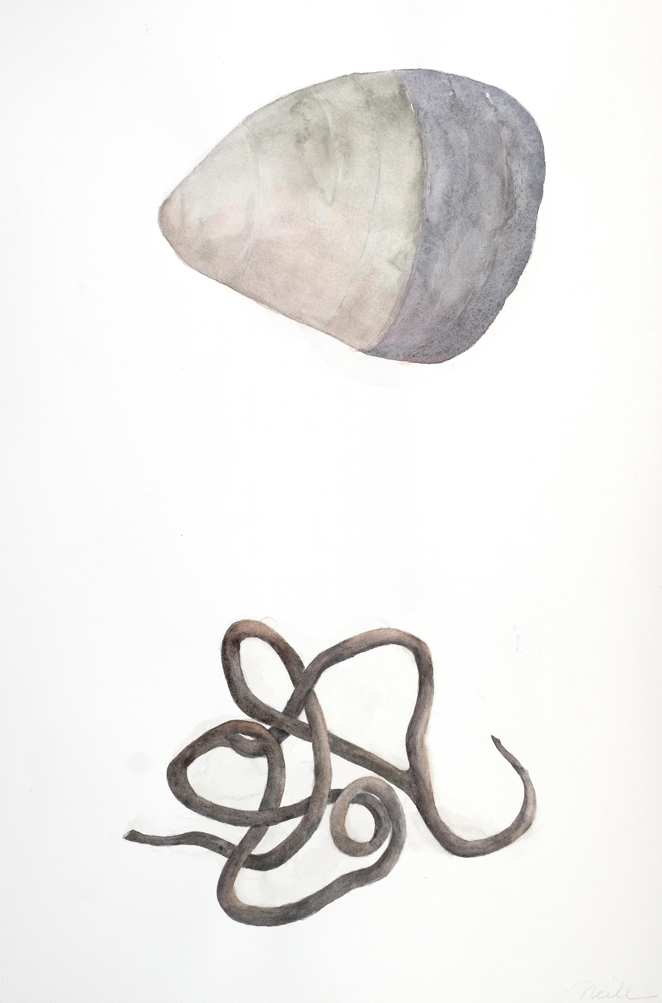 """Stone / Vine, 2020, Watercolor, Colored pencil, 30"""" x 20"""""""