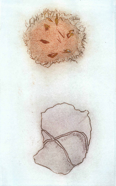"""Walnut / Stone, 2020, Monotype, 11"""" x 15"""""""
