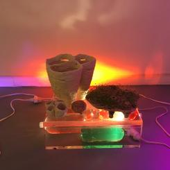 installation, garden, water, ceramics, light