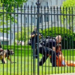 Diane Wilson Arrested on White House Lawn