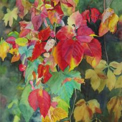 Fall Cascade II, watercolor of autumn foliage on vines, by Elizabeth Burin, fall color