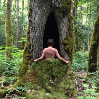 nature nurture, photography, sculpture, moss