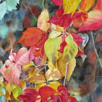 Watercolor painting of autumn foliage on vines, by Elizabeth Burin, fall color