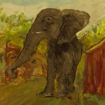 Still image from the Elephant's Song