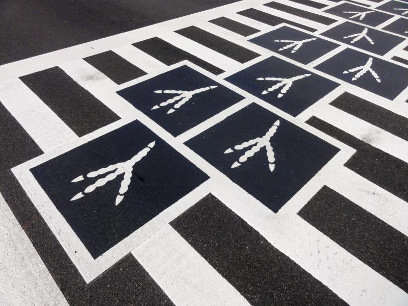 Hopscotch Crosswalk Colossus - bird tracks detail