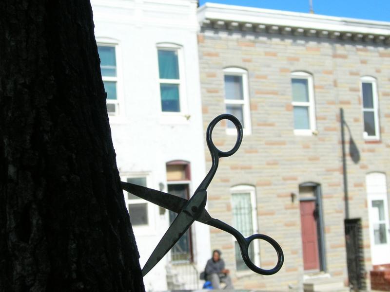 tree scissors