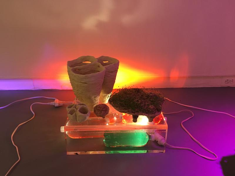 installation, garden, water, ceramics, light