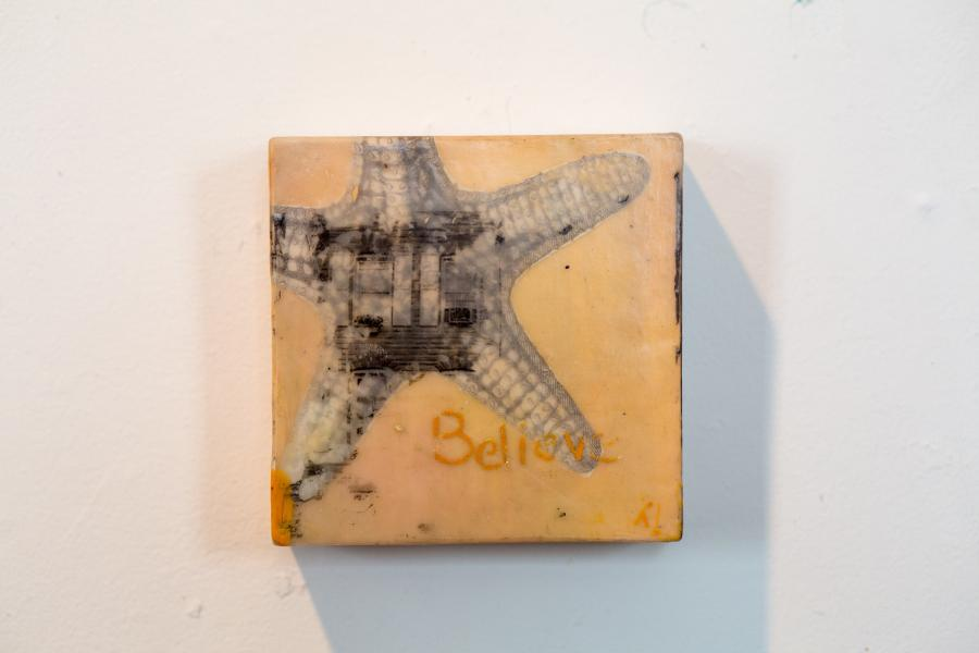 encaustic, rowhome, formstone, seastar, starfish, believe, baltimore