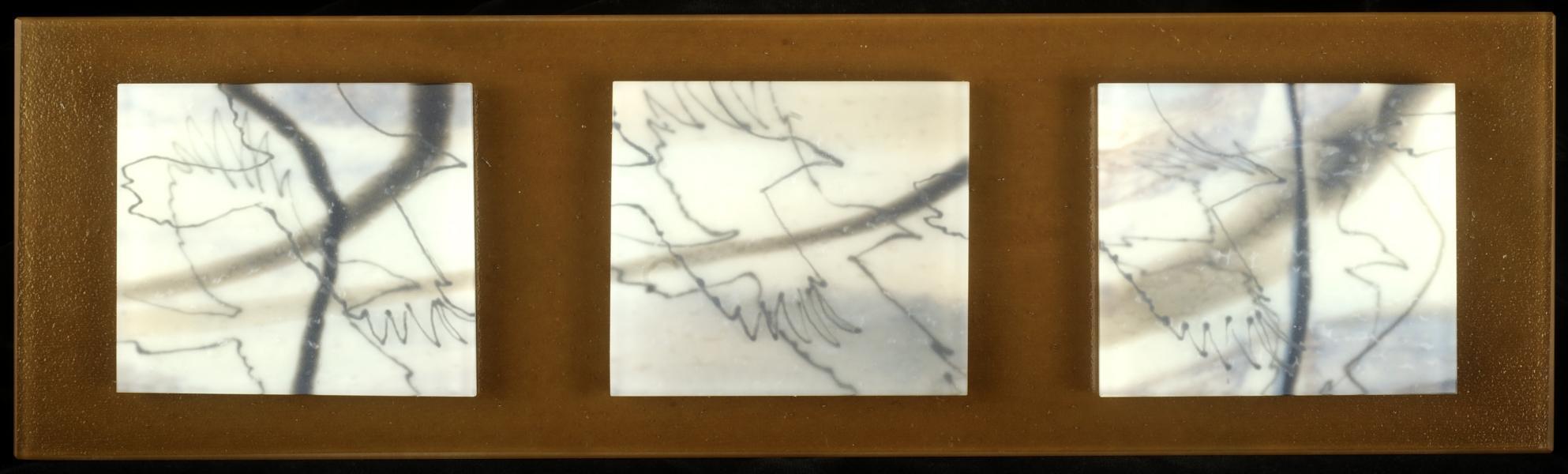 bird:corvus artwork