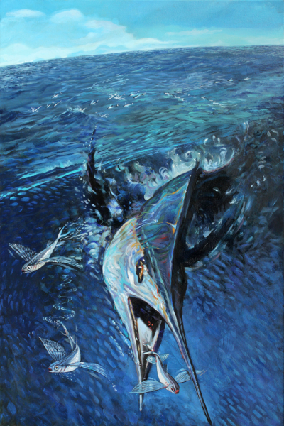 Flying fish, white marlin, ocean