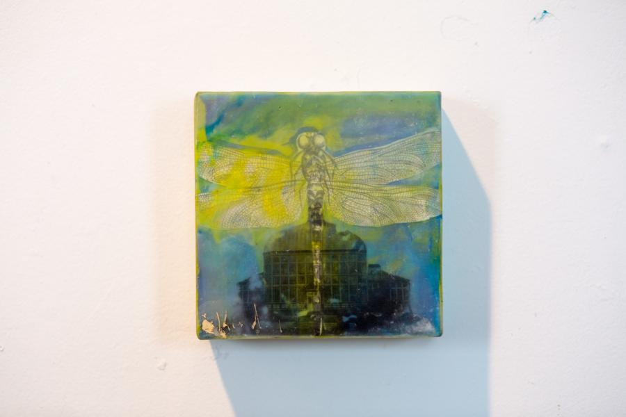 encaustic, dragonfly, conservatory, nature, baltimore