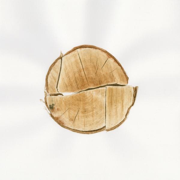Firewood #37