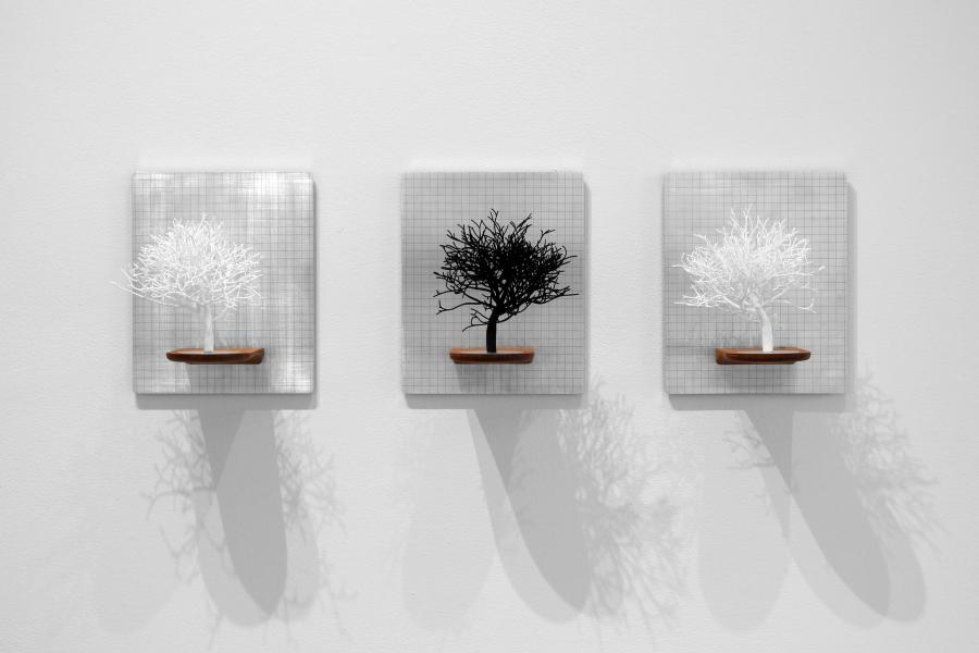 """11"""" x 9"""" x 7"""" each   nylon 3D print, aluminum and walnut      2014  created using an algorithm written by the artist that generates a nearly infinite number of trees based upon inputs and patterns found in natur"""