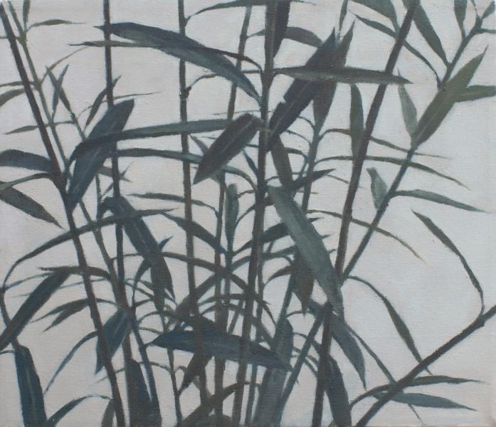 Plant #2