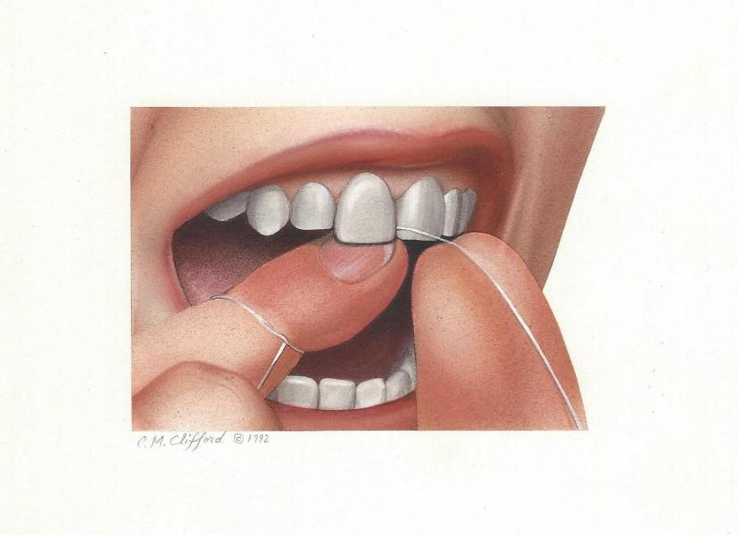 Airbrush on illustration board. 3 x 4 1/2 inches. Part of a series on how to floss.
