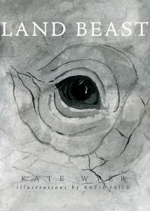 Land Beast, rhino, poaching