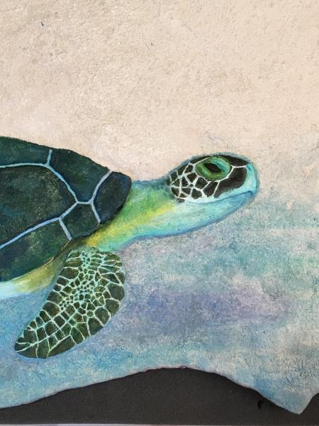 Green Sea Turtle, relief sculpture