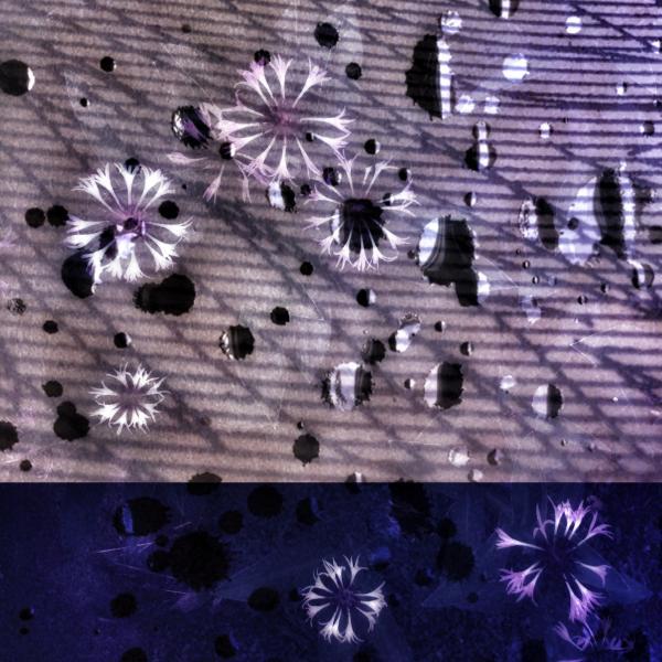 Karman Line Constellations by Teresa Duggan - ekphrastic art