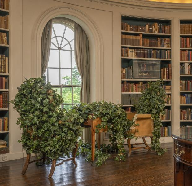 site-specific installation, contemporary art, sculpture, environment, landscape, architecture, ivy, Ladew Topiary Gardens, Oval Library, Laura Amussen