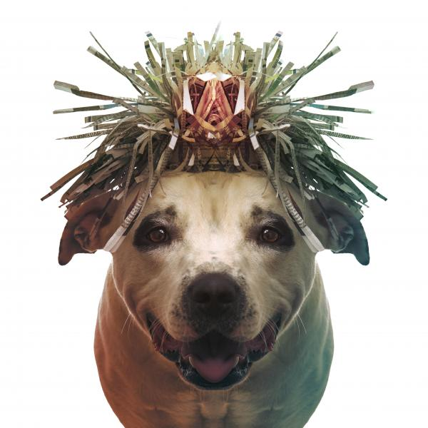 a dog wearing a paper hat that looks like long grasses with a fetish sitting in a throne at center