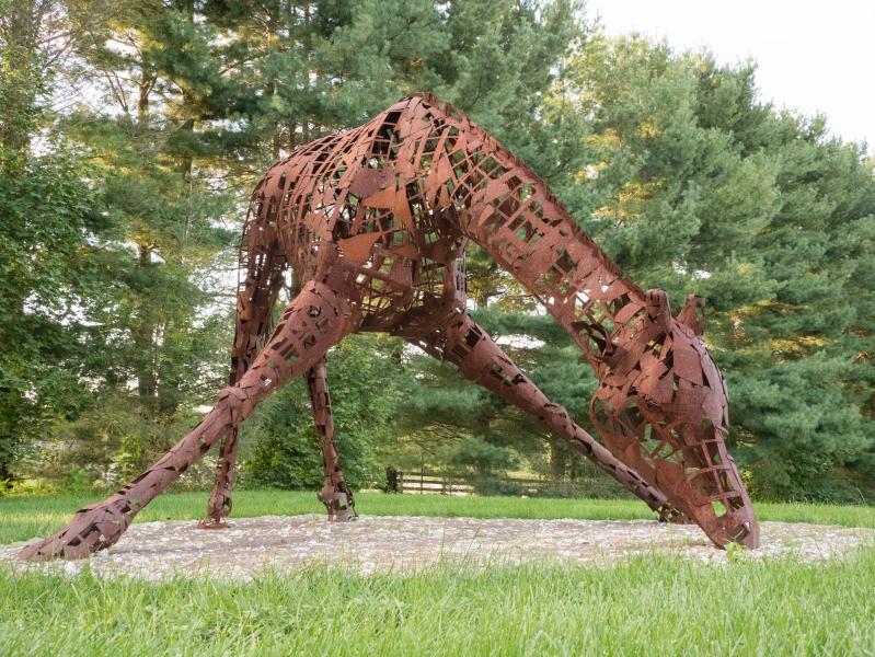 Steel giraffe