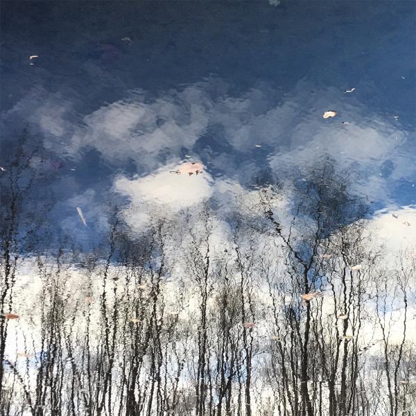 Lake Reflection 4