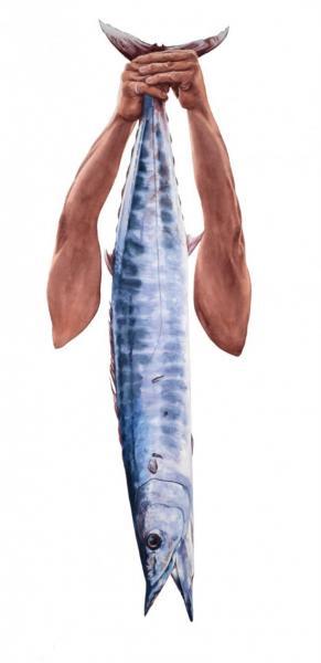 Ponemone watercolor wahoo scales