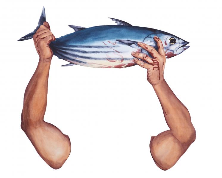 Ponemone watercolor tuna scales