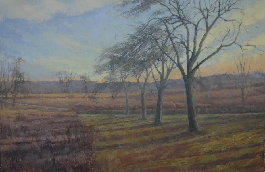 Henry Coe's portfolio   Baker Artist Portfolio
