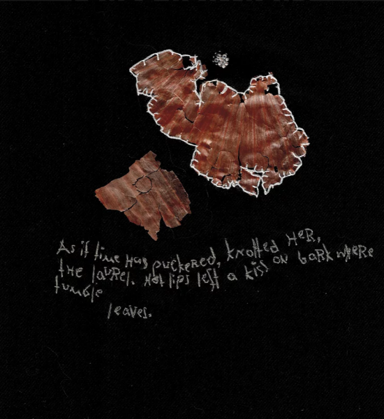 Embroidery with onion skin and words. As if time has puckered...