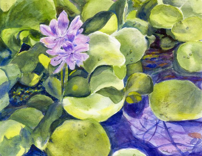 Purple flower on green leaves in water