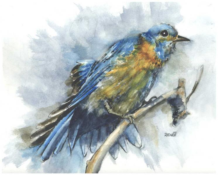 water color, nature, bird