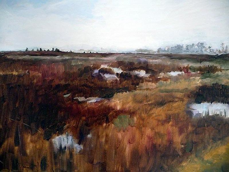 Eastern shore Maryland, wetlands, landscape