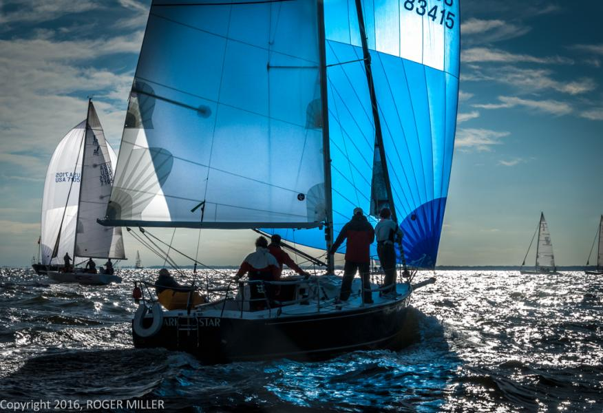 BLUE SAIL ON THE BAY