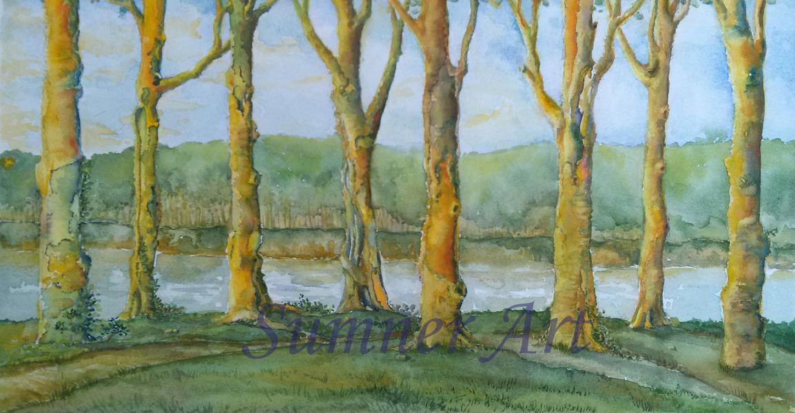 trees, landscape, gathering