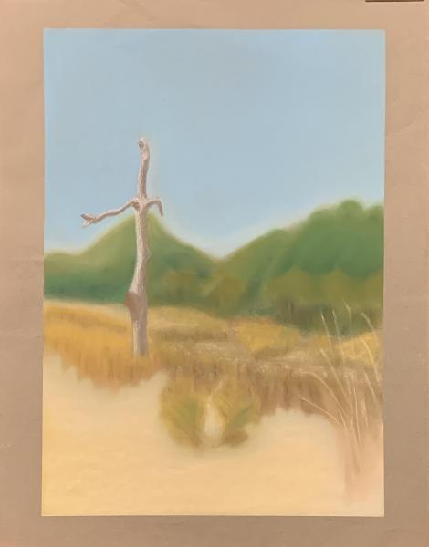 Dauphin Island AL, 2020, pastel on paper, 24x18